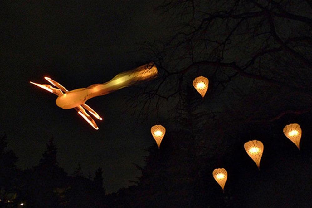 Ballet des libellules géantes - Spectacle son et lumières cerfs volants