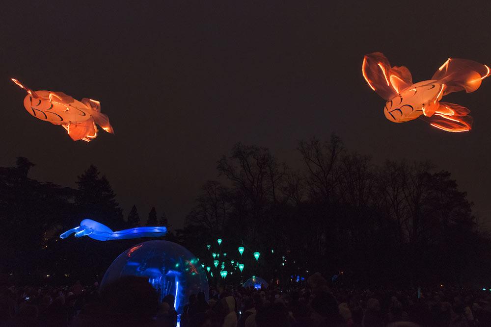 Vol onirique des carpes lumineuses - Spectacles sons et lumières cerfs volants