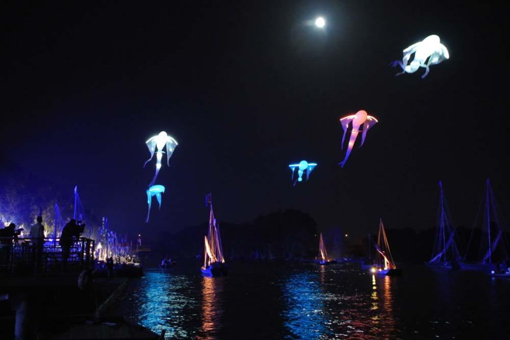 Carpes - Les luminéoles - Festival de la Loire