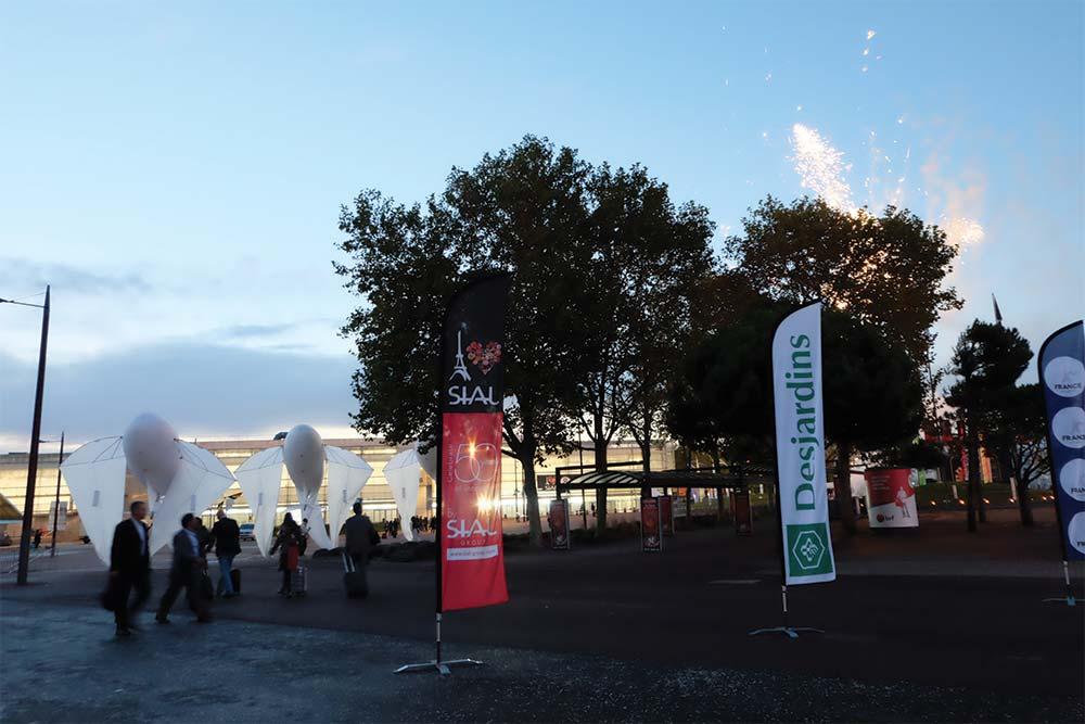 Expositions en extérieur de cerfs volants au salon de Paris