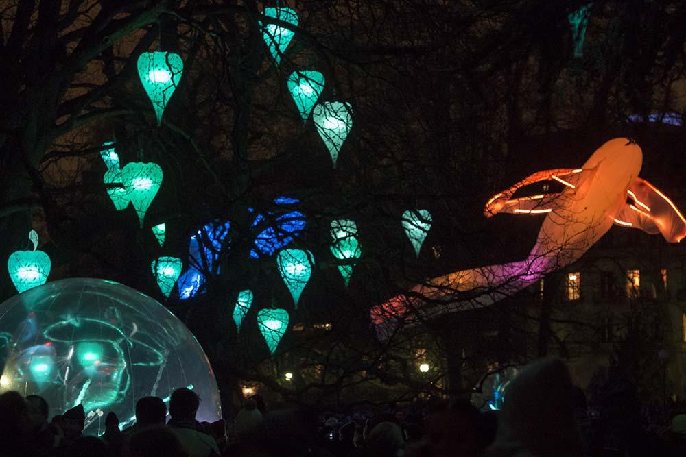 Jardin d'hiver - Fête des Lumières à Lyon