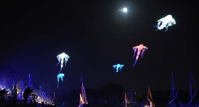 Les Luminéoles au Festival de la Loire