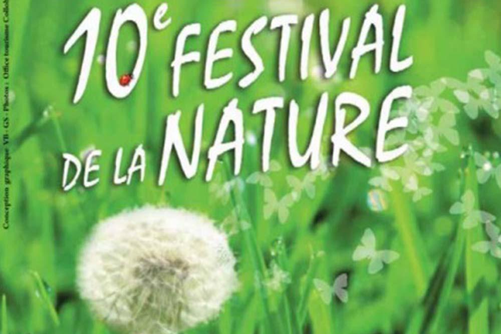 Les Luminéoles au Festival de la Nature 2015