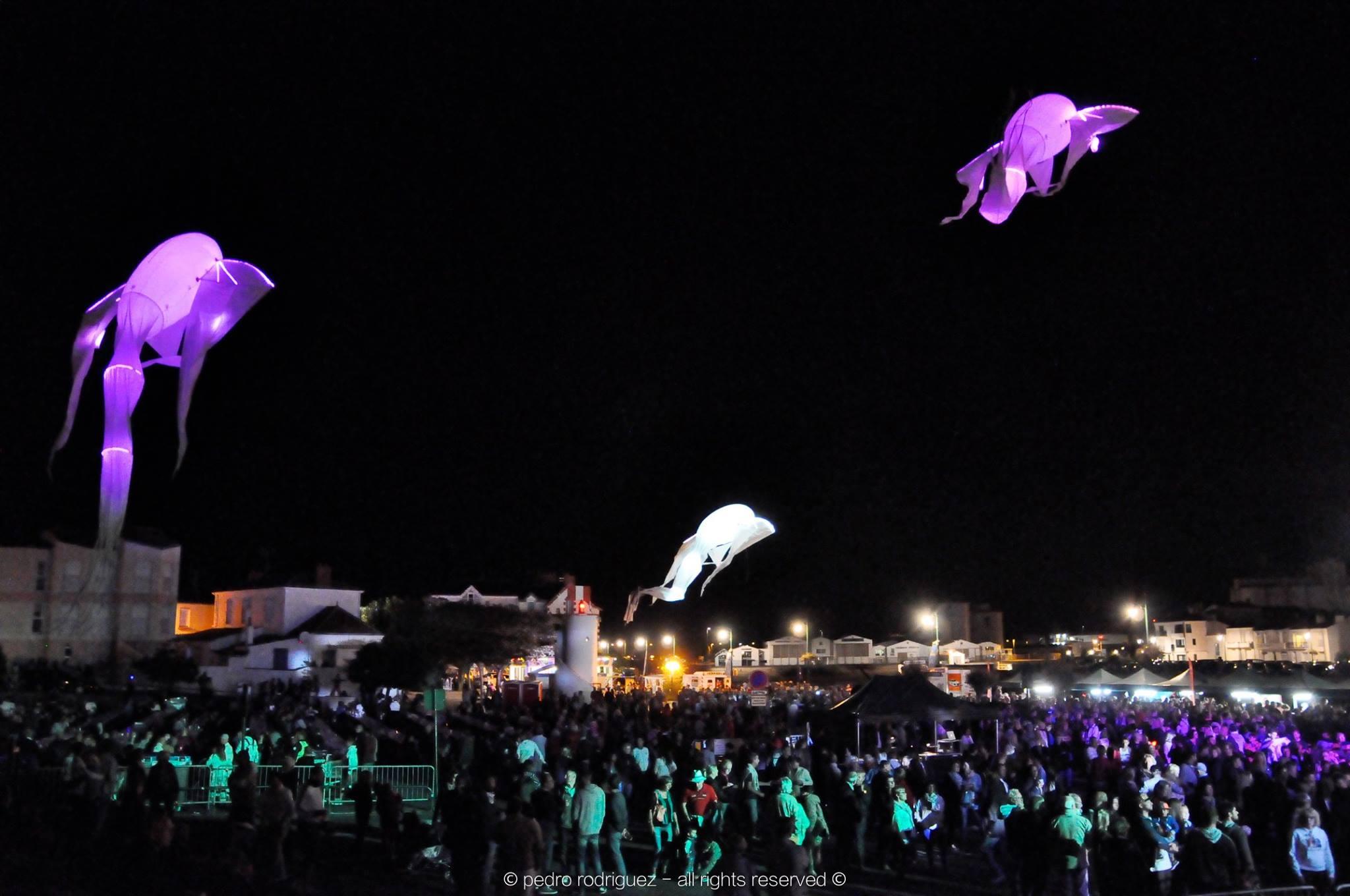 lumineol cerf volant porté par le vent évènement nuit